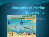 AICE Marine Science: Energetics of the Marine Ecosystem (Chapter 3)