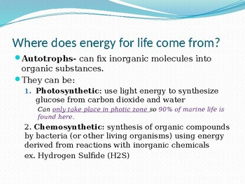 AICE Marine Science: Energetics of the Marine Ecosystem (Chapter 3)