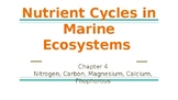 AICE Marine Science: Nutrient Cycles in Marine Ecosystems (Chapter 4)