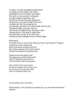 AIR ELA Test #5: Analyzing 2 Poems, Same Subject, Fully Editable