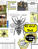 ALL ABOUT BEES LAP BOOK