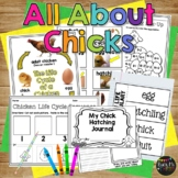 Chicken Life Cycle Worksheets, Books, Crafty, and Activities
