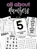 ALL ABOUT NUMBERS 1-10 ! Number identification BUNDLE