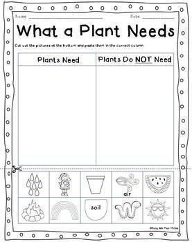 ALL ABOUT PLANTS and SEEDS, Plant Life Cycle Observation Journal, Crafty