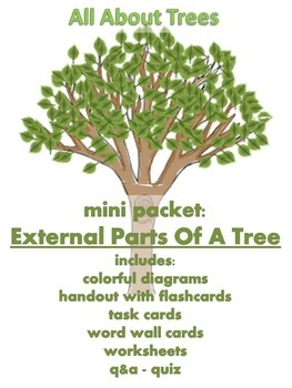 ALL ABOUT TREES  - Mini Packet: External Parts of a Tree