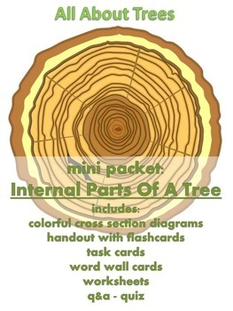 all about trees mini packet internal parts of a tree