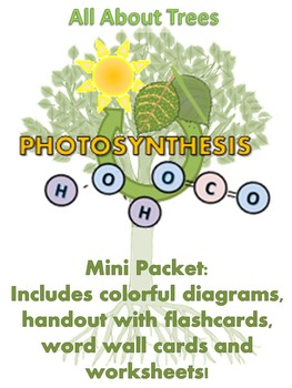 ALL ABOUT TREES  - Mini Packet: The Process Of Photosynthesis