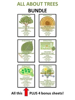 ALL ABOUT TREES  - Super Duper Bundle (Excellent for Photosynthesis Program)