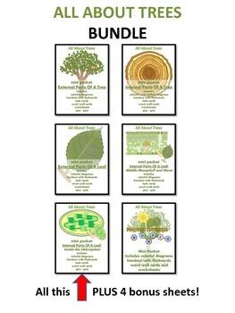 ALL ABOUT TREES  - Super Duper Bundle (Excellent for Photo