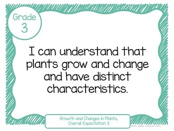 """Learning Goals Grade 3 """"I Can"""" Statements (Ontario)"""