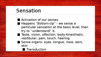 ALL of Sensation - AP Psychology - Powerpoint Lecture Slides