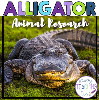 ALLIGATOR - nonfiction animal research