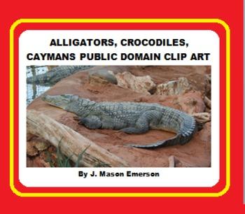 ALLIGATORS, CROCODILES & CAYMANS PUB DOMAIN CLIP ART (70+ IMAGES)