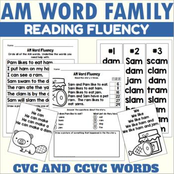 AM Word Family Fluency Practice