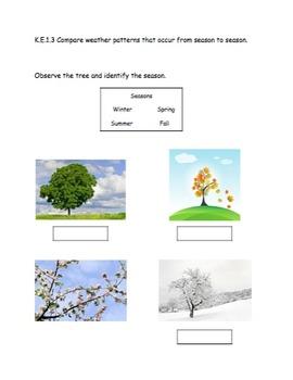 AMAZING Kindergarten Science Journal (assessment, notebook, folder, binder)