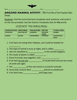 AMAZING MAMMAL ACTIVITY: FRUIT BATS: GRADES 3-5