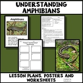 Amphibians - Characteristics of Animals Leson Plan, Photos, Poster