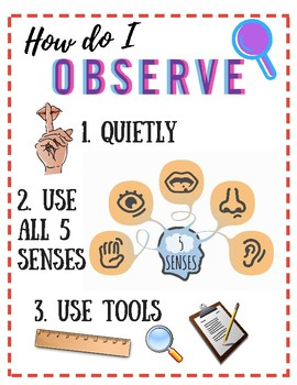 ANCHOR CHART: Rules of Observation