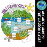 SCIENCE SCAFFOLDED NOTES/ ANCHOR CHART: THE CARBON CYCLE