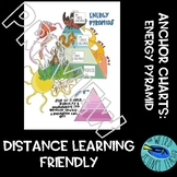 ANCHOR CHARTS: ENERGY PYRAMIDS - Distance/Digital Learning