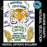 ANCHOR CHARTS: NATURAL SELECTION - 1 CHART, 2 PNG FILES