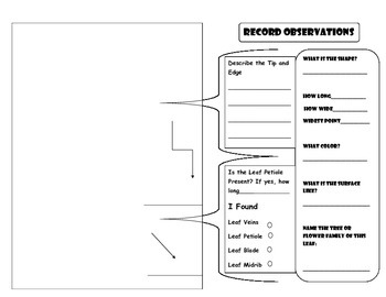 LEAVE OBSERVATION RECORD PAGE