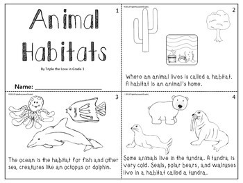 ANIMAL BUNDLE - HABITATS/COVERINGS/MOVEMENTS
