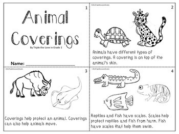 ANIMAL BUNDLE - HABITATS/COVERINGS/MOVEMENTS