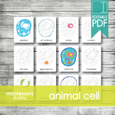 ANIMAL CELL PARTS • Montessori Cards • Flash Cards • Three