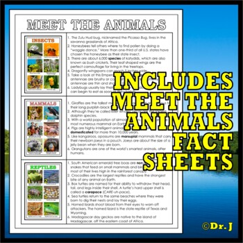 Animal Classes for PK-3: Amazing Animals Poster Pack