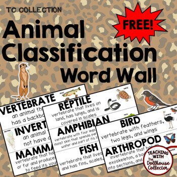 ANIMAL CLASSES WORD WALL FREEBIE!! Mammal, Reptile, Amphibian, Fish, Bird ++