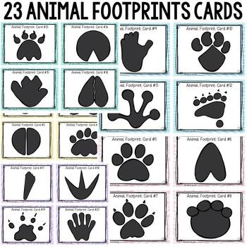 ANIMAL FOOTPRINTS SCOOT: COLORED FOOTPRINTS
