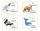 ANIMAL GAME ... I Have ... Who Has?    Set 2 ... Grades 2-3