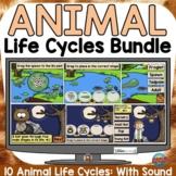 ANIMAL LIFE CYCLE (GROWING) BUNDLE: BOOM DIGITAL CARDS DIS