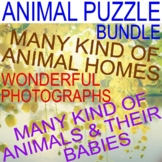 ANIMAL HOMES, RESEMBLANCE, COVERINGS - BUNDLE - PUZZLES - CENTERS / STATIONS