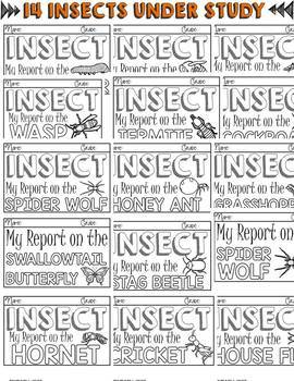 ANIMAL REPORT: INSECTS: INFORMATIONAL REPORTS