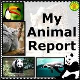 Animal Report Writing