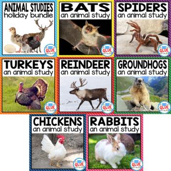 ANIMAL STUDIES: Holiday {Growing} Bundle