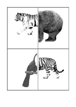 ANIMALS ? - CARDS - FUN STUFF - MEMORY