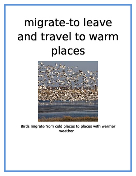 ANIMALS IN WINTER VOCABULARY