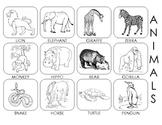 ANIMALS PECS