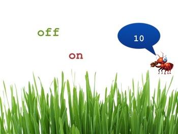 ANT-onyms