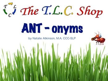 ANT-onyms