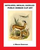 ANTELOPES, IMPALAS, GAZELLES  PUBLIC DOMAIN CLIP ART (45 images)