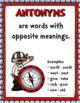 ANTONYMS: Ahoy! Antonyms Literacy Center, Antonyms Activity, Vocabulary, Pirates