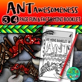 ANTS!  {A booklet of activities celebrating the life cycle of the ant}