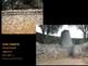 AP Art History Unit 9 African Art Powerpoint