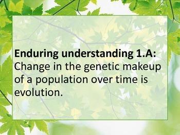 AP BIOLOGY CONCEPT POSTERS