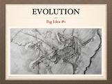 AP Bio Big Idea 1 - Evolution: Complete Unit for the Flipped Classroom