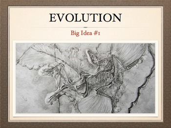 AP Bio Big Idea 1 - Evolution: Complete Unit for the Flipped Classroom